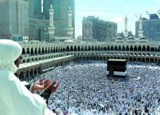 رئيس بعثة الحج السياحي يطمئن على أحوال حجاج المدينة المنورة
