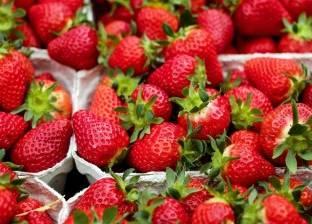 حفنة من الفراولة يوميا تحميك من أمراض القلب