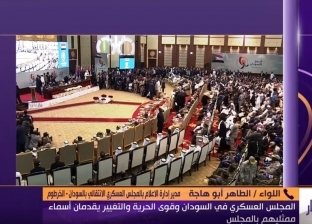 """""""العسكري الانتقالي"""": مصر لعبت دورا محوريا في الاتفاق السوداني"""