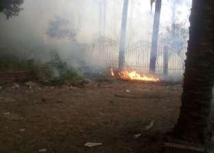 حريق يلتهم مشتل أرض عمارات البراملجى جنوب الجيزة