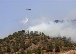 قبرص تعلن السيطرة على حرائق الغابات بعد 5 أيام من اندلاع النيران