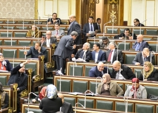 """""""خارجية البرلمان"""" عن ترحيل """"الألمانيين"""": حق أصيل لصيانة الأمن القومي"""