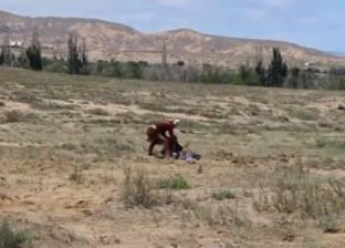 بالفيديو  مشهد مرعب لنسر عملاق يحاول اختطاف طفلة ويصيبها بجروح بليغة