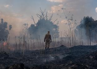 الحكومة البرازيلية: وصول معدل إزالة الغابات في الأمازون إلى أعلى مستوى