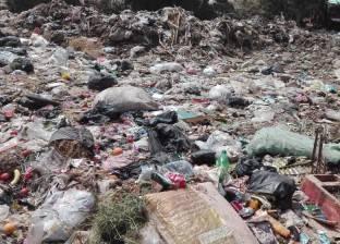 """مجلس مدينة شبرا الخيمة: وضعنا """"سيستم"""" عمل مستمر لرفع القمامة بالكامل"""
