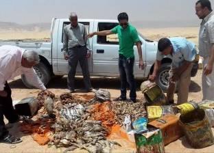 إعدام 216 كيلو أسماك مملحة فاسدة بسوهاج