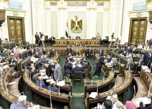 """برلماني: """"هيومن رايتس"""" مجرد أداة ضغط لتحقيق مطامع سياسية"""