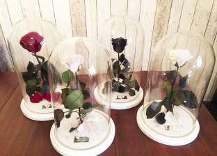 آمال عابدين: الزهور الأبدية غالية قوى لو طبيعية فصنعتها شبه الأصل وبسعر بسيط