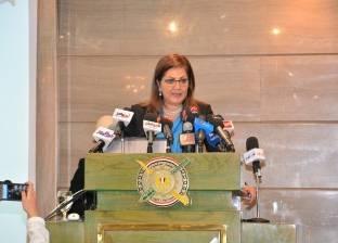 انعقاد اجتماع بنك الاستثمار العربي برئاسة وزيرة التخطيط