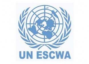 """""""الإسكوا"""" تثني على جهود مصر في الدفاع عن مصالح الدول النامية"""