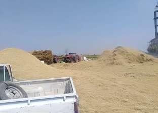 زراعة القليوبية: إزالة 68661 حالة تعد وإجراءات للقضاء على السحابة السوداء