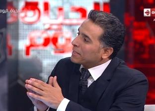 """مدير """"الخليج للدراسات"""": المنظمات الدولية تنطق بلسان الإخوان"""