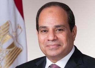 السيسي: الرأي العام في مصر لا يمكنه قبول حكم الإسلام السياسي