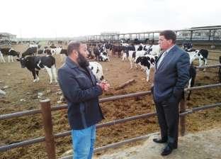 """وكيل """"زراعة البحيرة"""" يفاجئ مشروع الثروة الحيوانية ويتفقد قطيع المزرعة"""