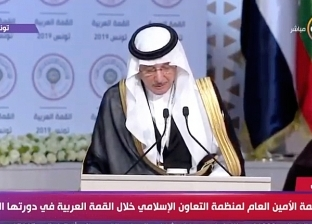 العثيمين: نعلق آمالا على القمة العربية لتعزيز قوة ووحدة العالم العربي