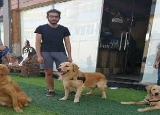 كافيه للترفيه عن الحيوانات الأليفة: من حق الكلاب تتدلع