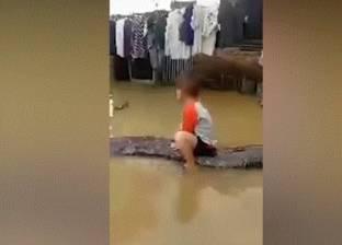 بالفيديو| في فيتنام.. الثعبان حيوان أليف يمكن للصغار اللهو معه