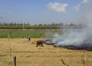 3 ملايين طن تهرب من «السحابة السوداء» وتهدد خصوبة التربة