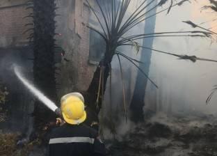 السيطرة على حريق هائل نشب بحظيرة ماشية في المنوفية