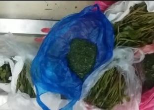إحباط محاولة لتهريب 900 جرام من القات المخدر إلى داخل البلاد