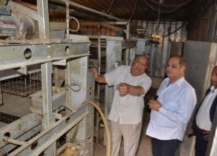 بعد 35 عاماً.. توقُّف أكبر محطة لإنتاج بيض المائدة فى الغربية
