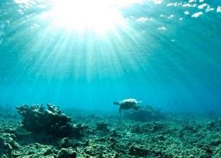 دراسة أمريكية: سخونة المحيطات تفوق التوقعات وتنذر بكارثة