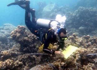 بالصور| ندوة لمحمية دهب عن الشعاب المرجانية في جنوب سيناء