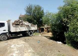 تجميل قرى ملوي بالجهود الذاتية ضمن أسبوع النظافة بالمنيا