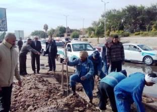 """رئيس """"طيبة الجديدة"""": طرح تنفيذ استكمال محطة معالجة الصرف الصحي بمناقصة عامة"""