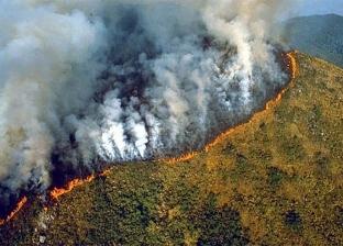 """ماكرون: الحرائق في غابات الأمازون تمثّل """"أزمة دولية"""""""
