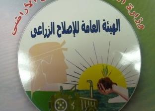 """طرح 70 قطعة أرض تابعة لـ""""الاستصلاح الزراعي"""" في مزاد علني نهاية أكتوبر"""