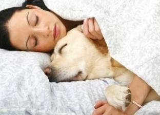 تحذير لأصحاب الحيوانات الأليفة: تتسبب في متلازمة القولون العصبي