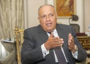 مصر تطالب بمكافحة تمويل الإرهاب خلال كلمتها بمجلس الأمن