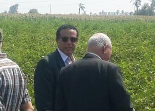 """وكيل """"زراعة كفرالشيخ"""": تدوير نحو 202 طن أعلاف تقليدية و1000 طن أسمدة"""