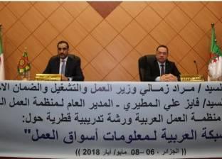 """""""العمل العربية"""": نسعى لإيجاد آلية متطورة لتحقيق تنمية 2030"""