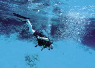 تعرف على شروط وتعليمات التسجيل بدورة الغوص في دهب ومرسى علم