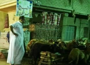 «موسم اللحمة» على الأبواب: مصلحة الجزارين.. ومعاناة الجيران