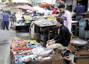 تجار السمك يستعدون لموسم عيد الفطر بعد شهر من «الإفلاس»
