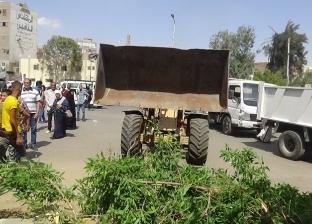 مدير أمن السويس يقود حملة لإزالة الإشغالات بأكبر ميادين المحافظة