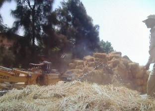 """""""الزراعة"""": حصاد 550 ألف فدان أرز وتحرير 1980 محضر مخالف لحرق القش"""