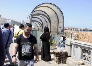 محافظ الإسكندرية يوجّه بزيادة المساحات الخضراء على الكورنيش