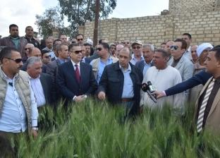 وزير الزراعة لمزارعي القمح: حافظوا على درجة نقاوته حتى لا ينخفض ثمنه