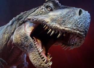"""علماء: الديناصور """"الأكثر رعبا على وجه الأرض"""" كان يملك مشاعر حب كبيرة"""
