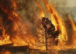 اندلاع حرائق في غابات بشمال اليونان