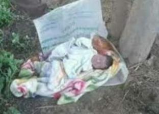 العثور على جثة طفل حديث الولادة في مقابر الشهداء بالإسماعيلية