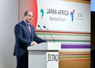 """السيسي أمام الـ""""تيكاد"""": الاتحاد الأفريقي عازم على تحقيق نهضة القارة"""