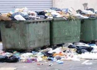 رئيس مدينة دمياط: نفذنا أول تجربة لمدفن صحي لمواجهة أزمة القمامة