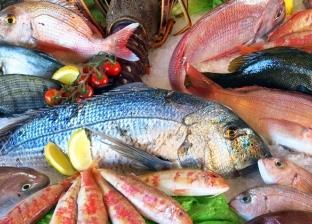 أسعار السمك اليوم الثلاثاء 22-10-2019 في مصر