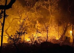 رجال الإطفاء يحاولون إخماد حريق في جزيرة إيفيا اليونانية