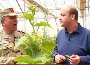 """رئيس """"الوطنية"""": المزارع المحمية تساهم في خفض الأسعار وضبط السوق"""
